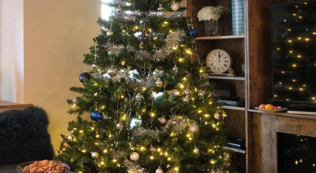 SB_Christmas_resized