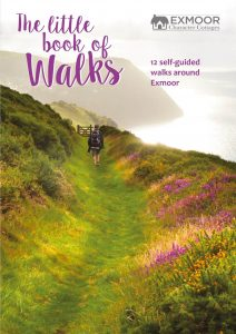 The Little Book of Walks cover