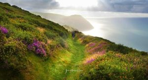 Valley of Rocks path view