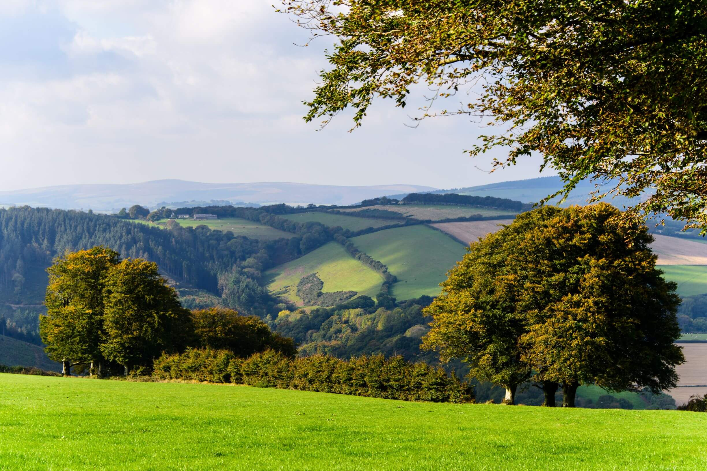 A Guide to Walking The Quantock Hills