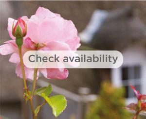 Check availability